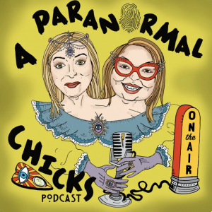 A Paranormal Chicks Cover